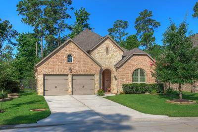 Montgomery Single Family Home For Sale: 106 Sagestone Court
