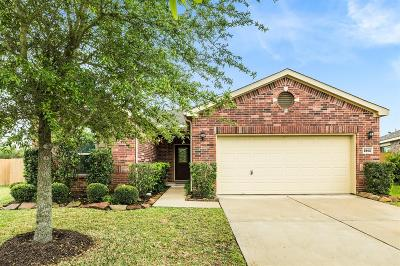 League City Single Family Home For Sale: 2802 Mezzomonte Lane