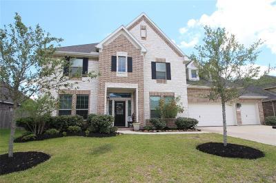 Friendswood Single Family Home For Sale: 4219 Buroak Drive