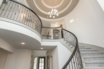 Manvel Single Family Home For Sale: 4304 Turnbridge Court