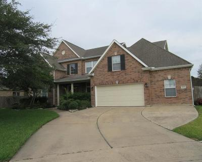 Friendswood Single Family Home For Sale: 2437 Pebble Lodge Lane