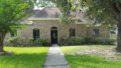 Houston Single Family Home For Sale: 5415 Holly View Drive #-