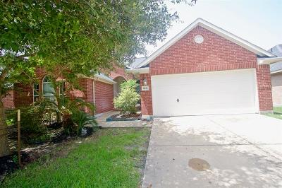 Houston Single Family Home For Sale: 8222 Terrace Brook Drive