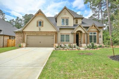 Pinehurst Single Family Home For Sale: 710 Majestic Shores Lane