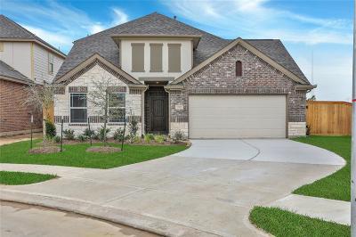 Single Family Home For Sale: 20602 Riley Copper Drive