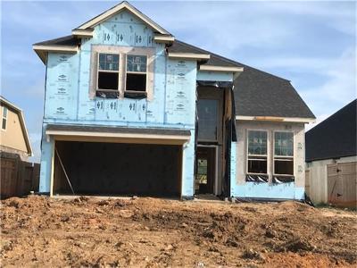 Fulshear Single Family Home For Sale: 29134 Crystal Rose Lane