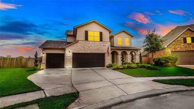 Katy Single Family Home For Sale: 5218 Kingship Court