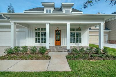 Montgomery Single Family Home For Sale: 123 Silverwolf Cove Place