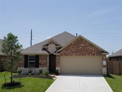 Katy Single Family Home For Sale: 4823 San Gregorio