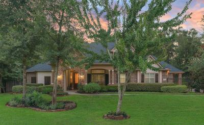 Conroe Single Family Home For Sale: 10035 Estes Hill Lane
