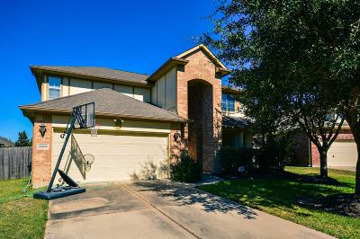 Katy Single Family Home For Sale: 25306 Overbrook Terrace Lane