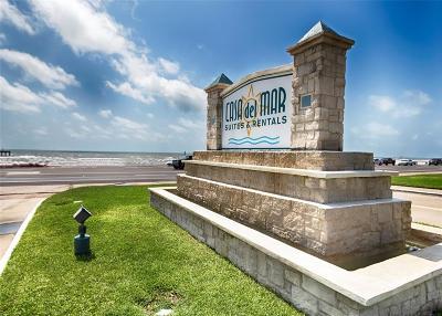 Galveston Condo/Townhouse For Sale: 6102 Seawall Boulevard #123