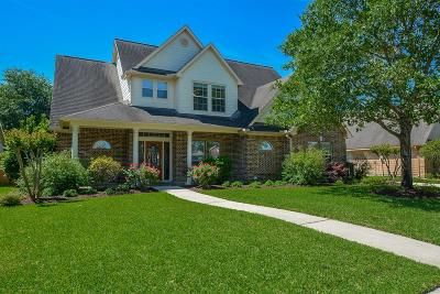Katy Single Family Home For Sale: 6711 Patricia Lane