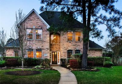 Friendswood Single Family Home For Sale: 408 Meadow Wood Lane