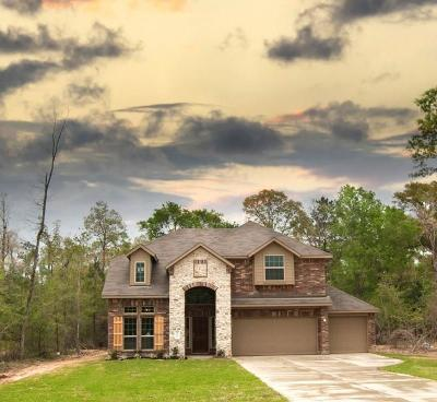 Single Family Home For Sale: 4607 Axis Trail