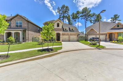 Conroe Single Family Home For Sale: 9808 Sweet Flag Court
