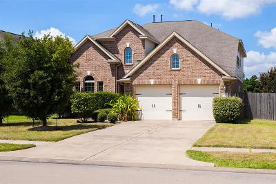 Single Family Home For Sale: 4951 Ivory Meadows Lane