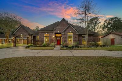 Spring Single Family Home For Sale: 18903 Casper Drive