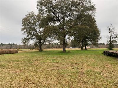 Conroe Farm & Ranch For Sale: 14945 Wiggins Road