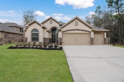 Tomball Single Family Home For Sale: 31107 Raleigh Creek