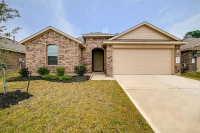 Tomball Single Family Home For Sale: 23034 Ari Creek Way