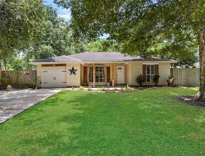 Friendswood Single Family Home For Sale: 510 Brandywyne Drive