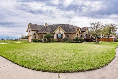 Galveston County Single Family Home For Sale: 4916 S Glen Lane