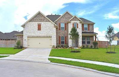 Lakes Of Savannah Single Family Home For Sale: 4618 Bisontine Bay Lane
