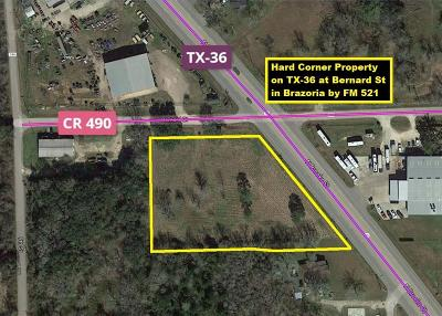 Brazoria Residential Lots & Land For Sale: 1 Hwy 36 At Cr 490