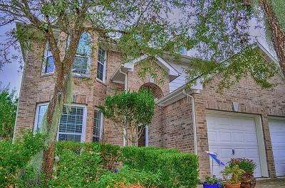 League City TX Single Family Home For Sale: $265,000