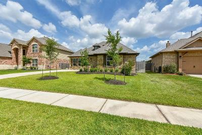Tomball Single Family Home For Sale: 10811 Silver Shield Way