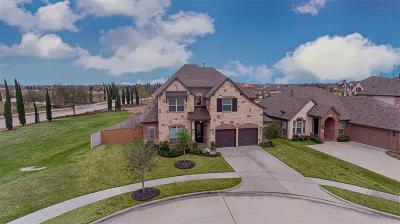Single Family Home For Sale: 2756 Panzano Lane