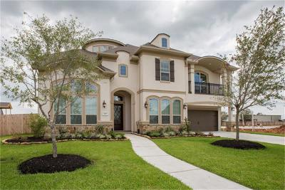 Friendswood Single Family Home For Sale: 1305 Summer Field Lane