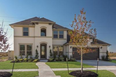 Manvel Single Family Home For Sale: 4622 Birch Knoll Trail