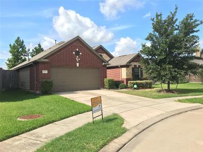 Houston Single Family Home For Sale: 16543 Sheffield Run Drive