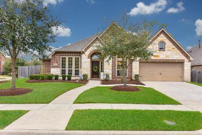 Houston Single Family Home For Sale: 14203 Pearl Shadow Lane