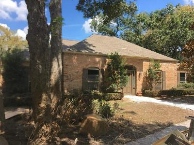 Houston Single Family Home For Sale: 14614 Bramblewood Drive