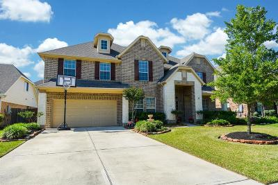 Katy Single Family Home For Sale: 26230 Grace Hills Lane