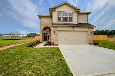 Montgomery Single Family Home For Sale: 9 Terra Vista Place