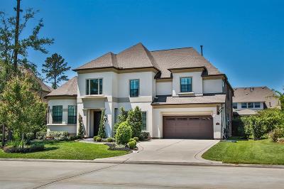 Spring Single Family Home For Sale: 11 Wrangler Pass Drive