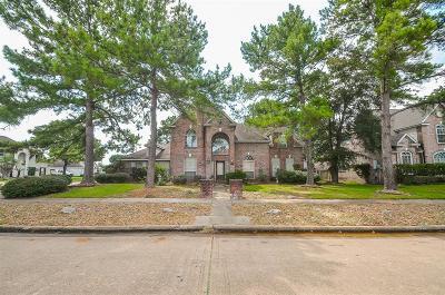 Katy Single Family Home For Sale: 19703 Arbor Creek Drive