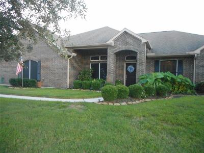 Baytown Single Family Home For Sale: 8826 Black Horse Road