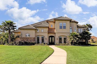 Katy TX Single Family Home For Sale: $1,250,000