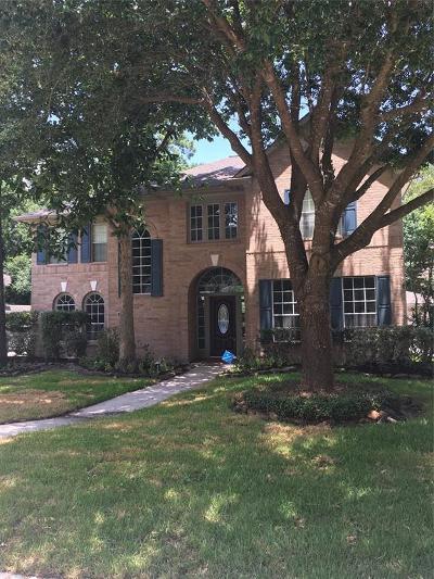Houston Single Family Home For Sale: 4519 Mulberry Park Lane