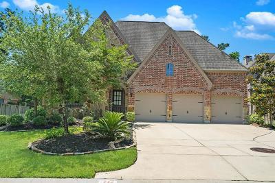 Magnolia Single Family Home For Sale: 71 S Almondell Circle