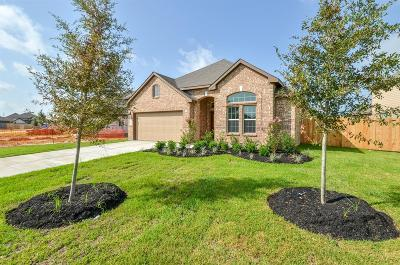 Katy Single Family Home For Sale: 3018 Francisco Bay Place