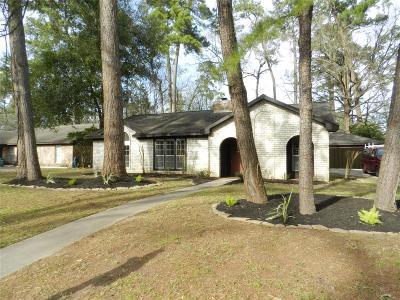 Houston Single Family Home For Sale: 2187 River Village Drive