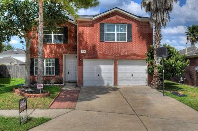 Houston Single Family Home For Sale: 17434 Ivy Stream Drive