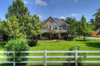Single Family Home For Sale: 12110 Pin Oak Drive