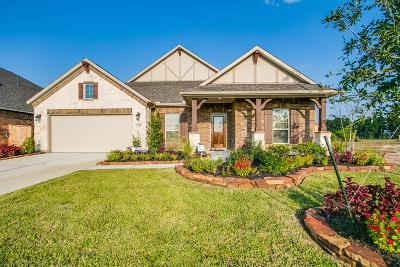 Single Family Home For Sale: 21806 Soncy Way
